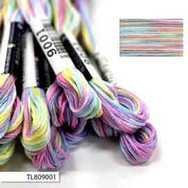#9001 Cosmo Seasons Variegated Embroidery Floss