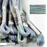 #9002 Cosmo Seasons Variegated Embroidery Floss