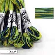 #9006 Cosmo Seasons Variegated Embroidery Floss