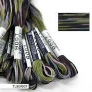 #9007 Cosmo Seasons Variegated Embroidery Floss