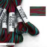 #9009 Cosmo Seasons Variegated Embroidery Floss