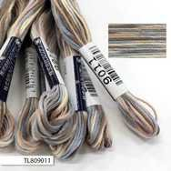 #9011 Cosmo Seasons Variegated Embroidery Floss