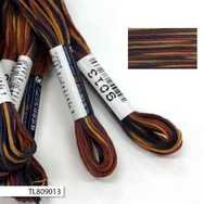 #9013 Cosmo Seasons Variegated Embroidery Floss