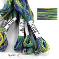 #9015 Cosmo Seasons Variegated Embroidery Floss