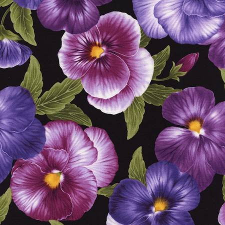 Viola - Purple Pansies All Over Black