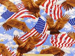Patriotic USA - Eagles & Flags