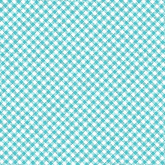 Quilt Camp - Blue Bias Check