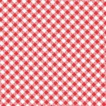 Quilt Camp - Red Bias Check
