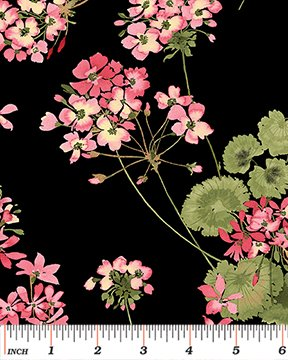 Sundance - Geraniums on Black