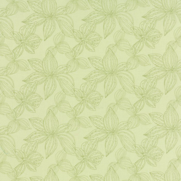 Aria - Green Lily Foliage
