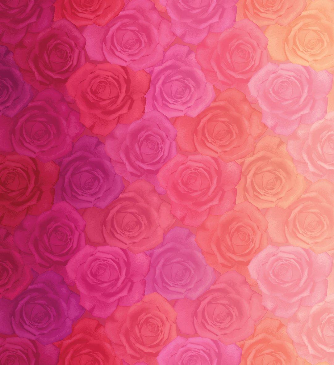 Gradients - Pink Roses