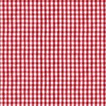 State Fair- Red Gingham