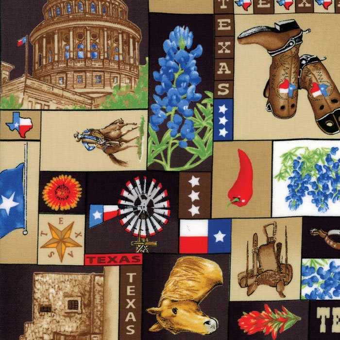 Fabric Best Of Texas 11311-17 Multi