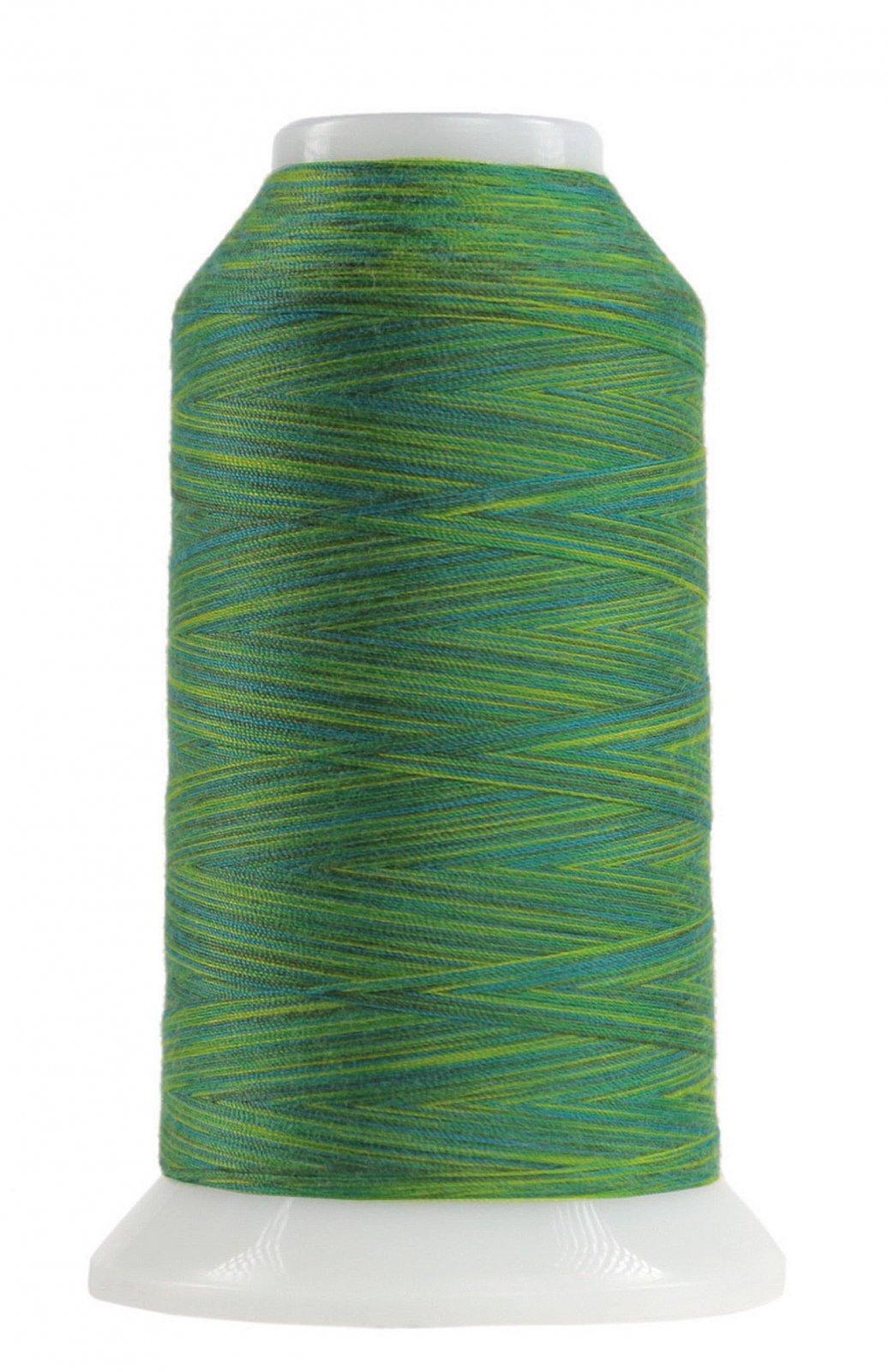 Omni Variegated Polyester Thread 40wt 2000yd Rolling Hills
