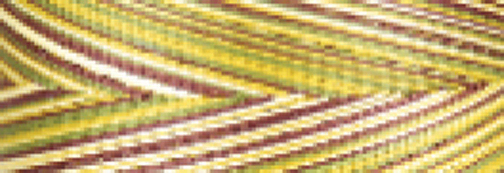Cotton 40wt Thread 700yd - Variegated Corn Field
