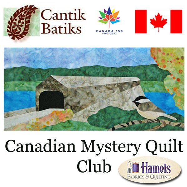 Canadian Mystery Quilt Club (no longer a mystery)