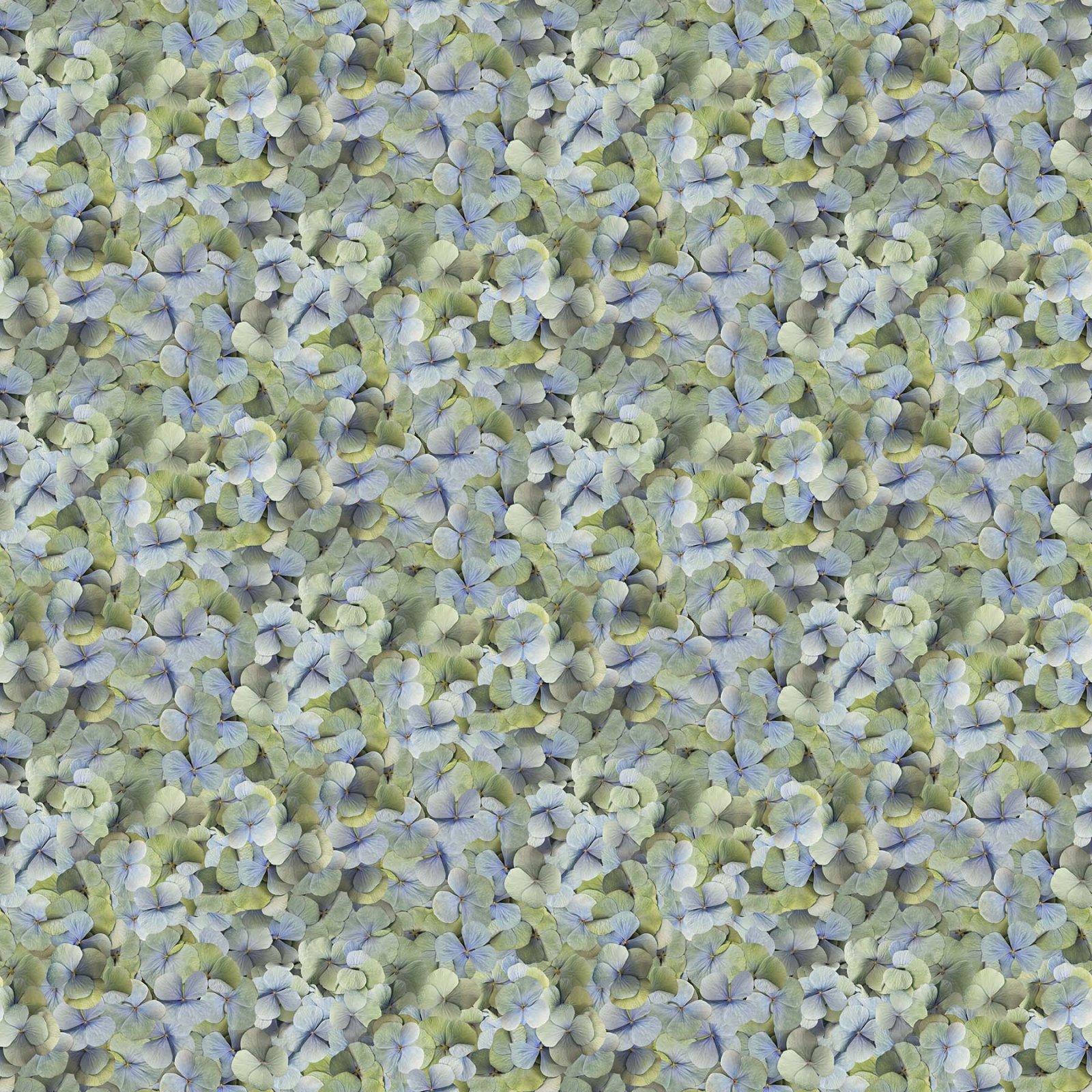 HARLOW BLUE MULTI - DP23600-42