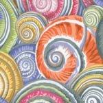 Kaffe Collective Spiral Shells Grey
