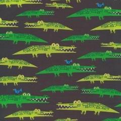 Ed Emberley Favorites - Alligators