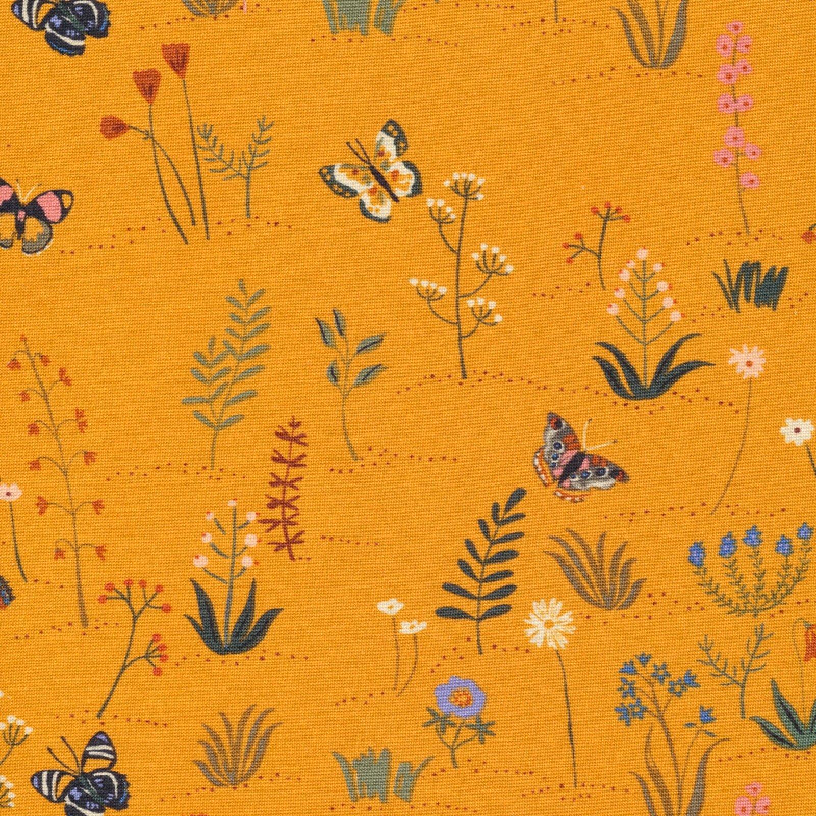 Arid Wilderness Desert Blooms
