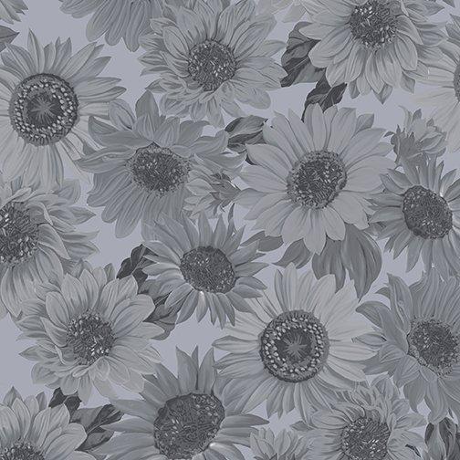 108 Sunflower Whisper 9936W-13 Med Gray