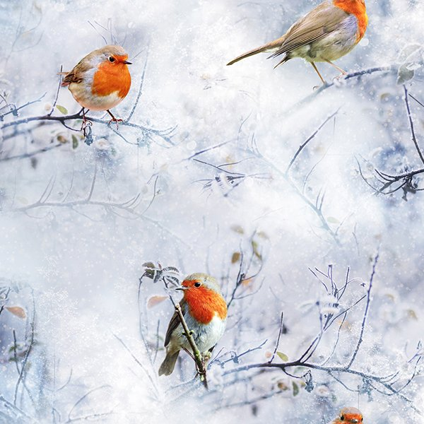 Call of the Wild European Robin R4561 Ice
