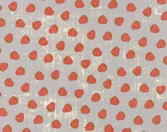 Garden Project/39553 12 Strawberries in Pebble