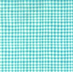 Michael Miller/Gingham Play/CX7161-AQUA-D