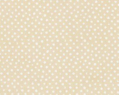 Dear Stella/Grey Dot/Stella #37
