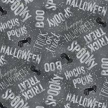 Spooky Vibes white words on gray