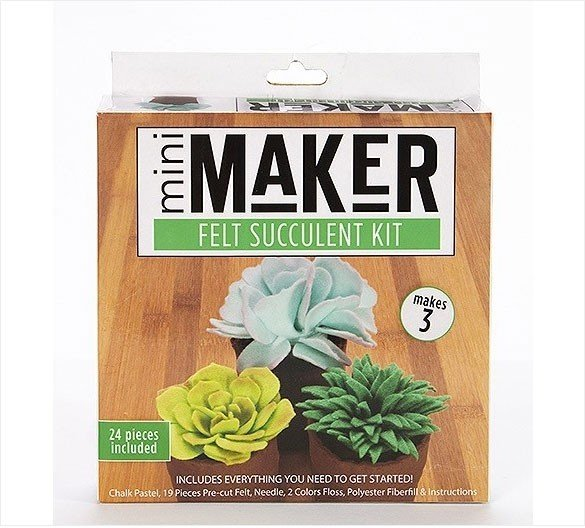 Felt Succulent Kit/Green (Mini Maker by Leisure Arts) -