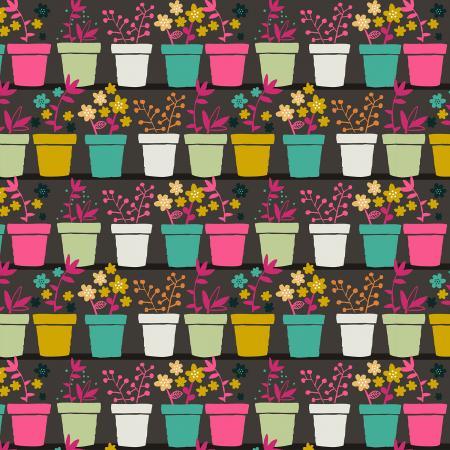 Plants in Pots/Brown: From the Desk of (Tjarda Borsboom)