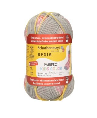 Regia Pairfect Rainbow Color 4 Ply Yarn at WEBS |