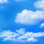ELIZABETH'S LANDSCAPE MEDLEY 369-BLUE