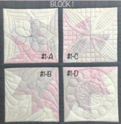 Block #1 Shadowed Dizzy Geese