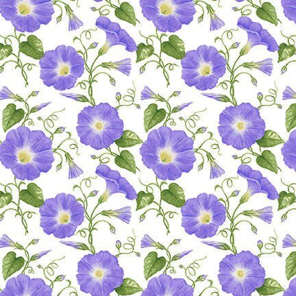 Hydrangea Songbirds Purple Morning Glory