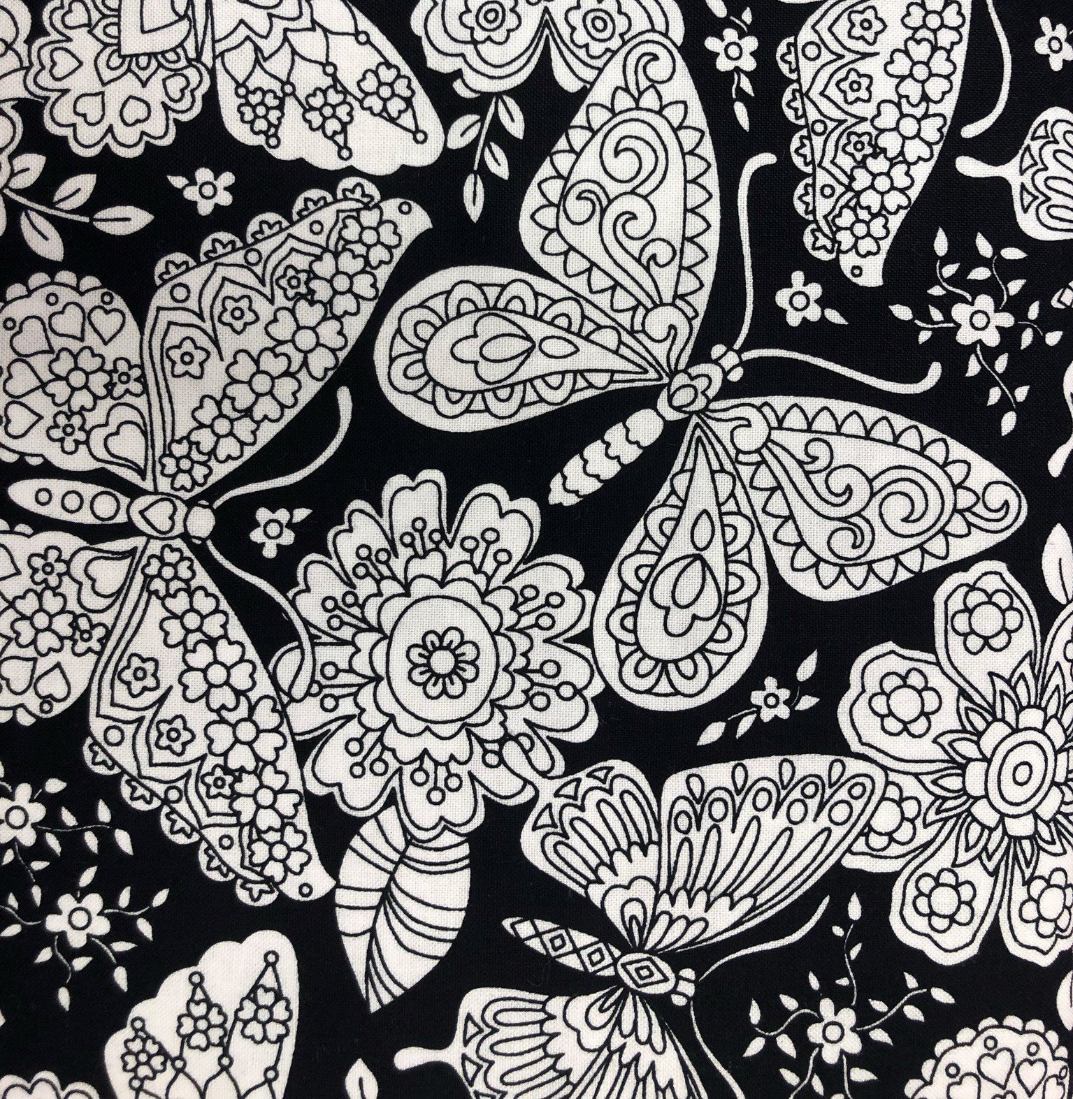 Coloring Fabric
