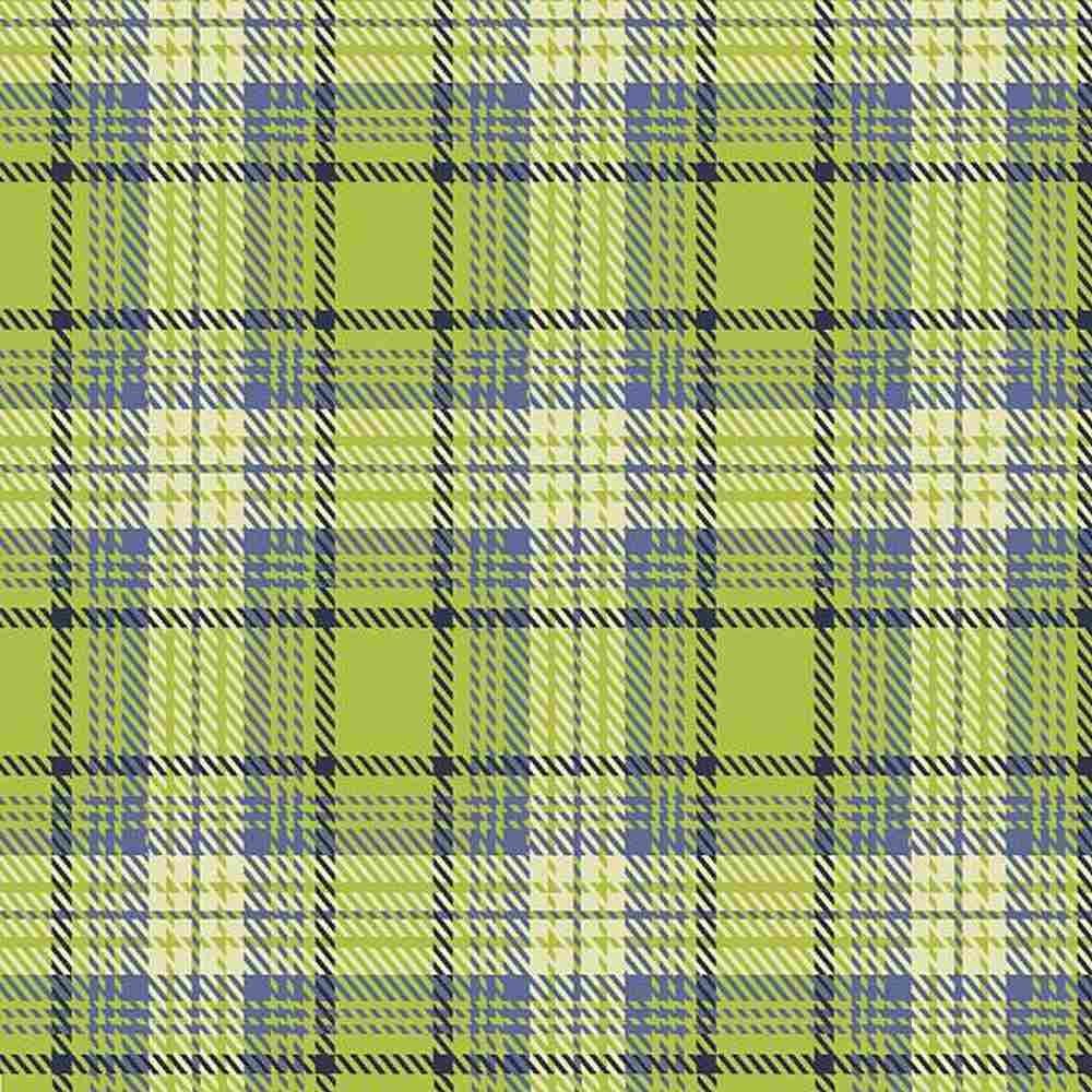 Mix and Mingle Light Green Flannel Scarf Kit - 2 Yard Cut