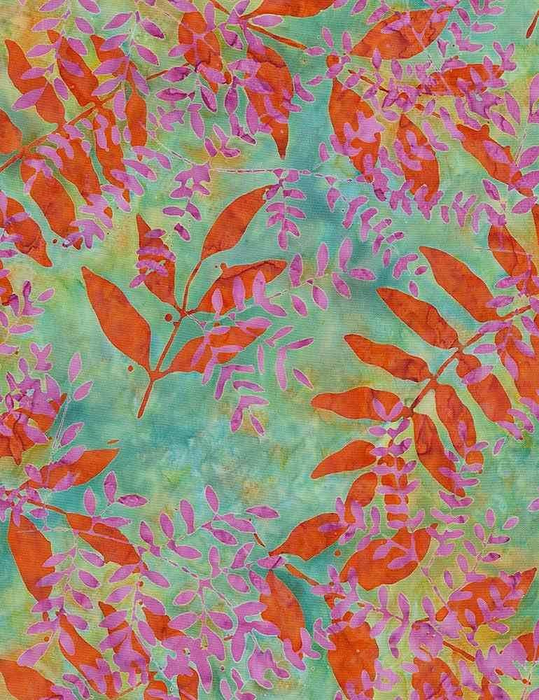 Tonga Persimmon Nature