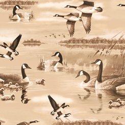 Flying Geese Geese Lake Scenic Tan