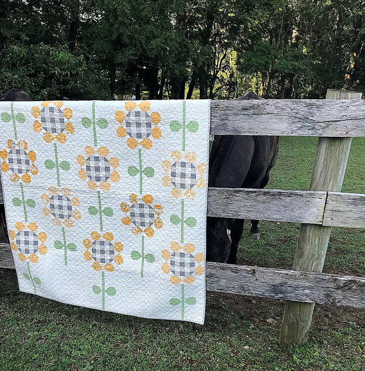 Rain Check Quilt Kit w/ Backing