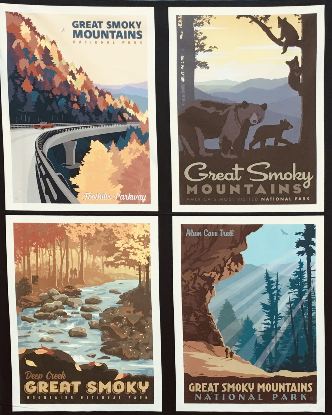 GREAT SMOKY NATIONAL PARKS PILLOW PANELS PP8797  by Riley Blake