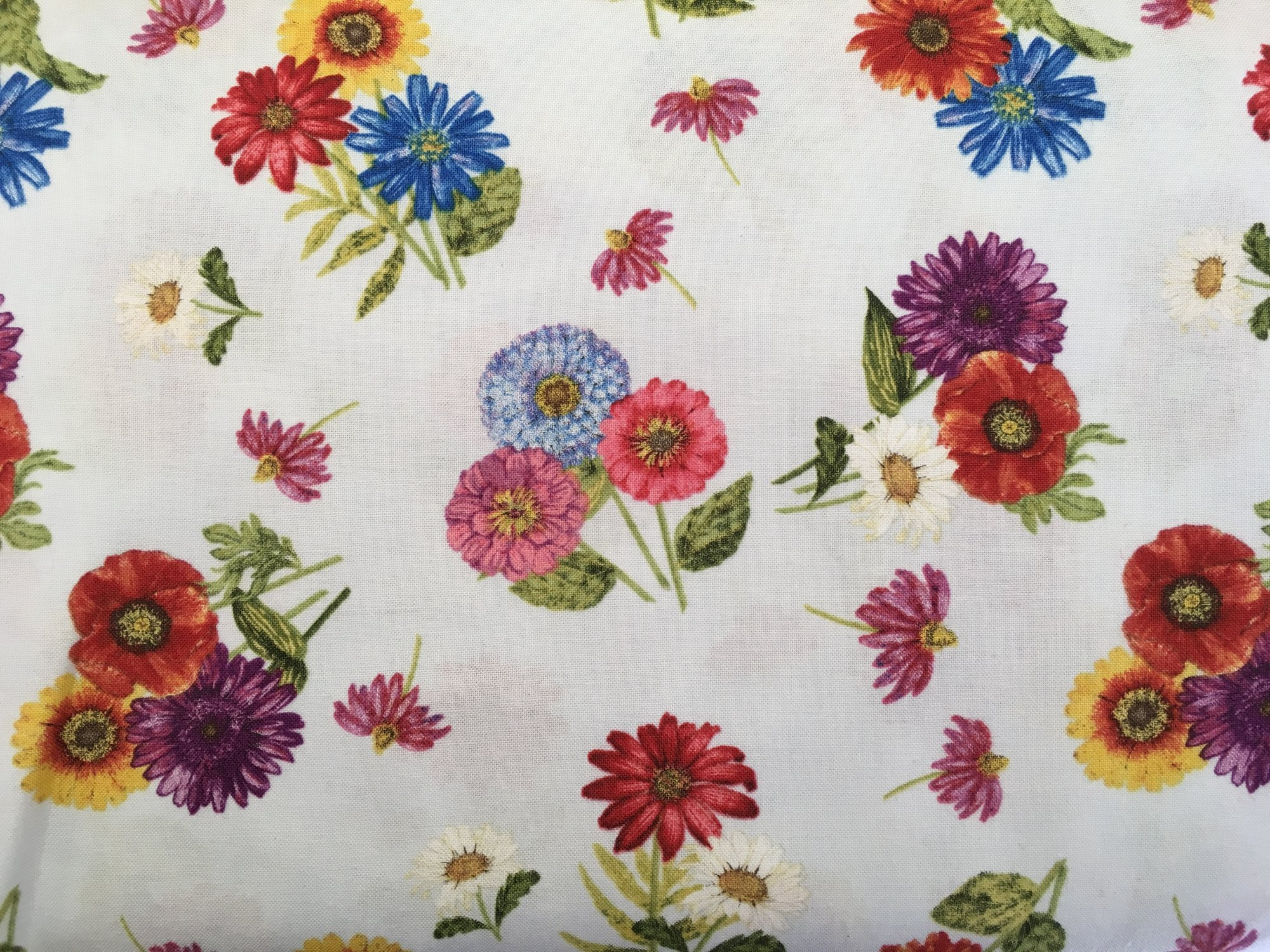 Blossom & Bloom 74203437