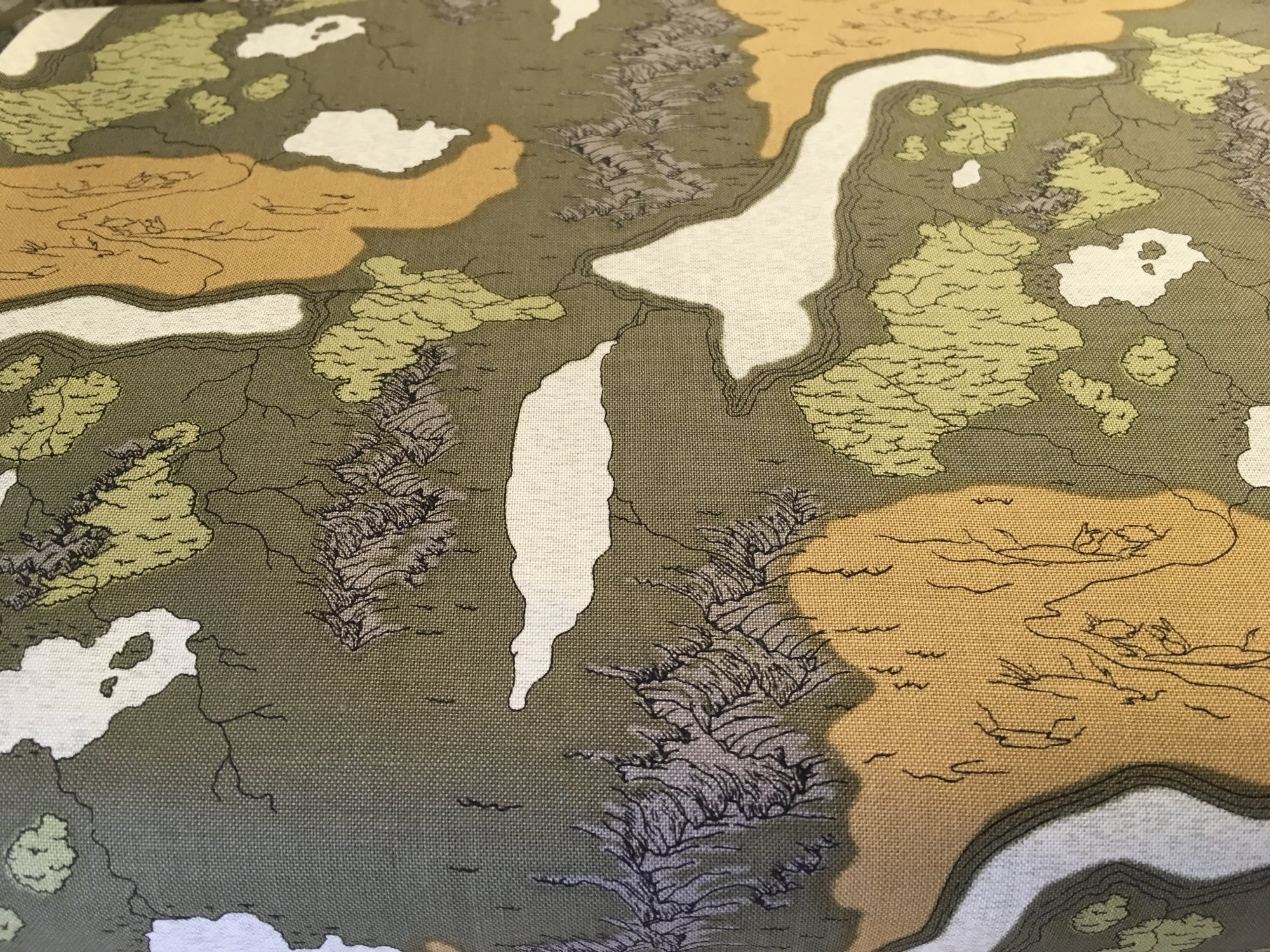 NATIONAL PARKS MAP GREEN C8781 by Riley Blake