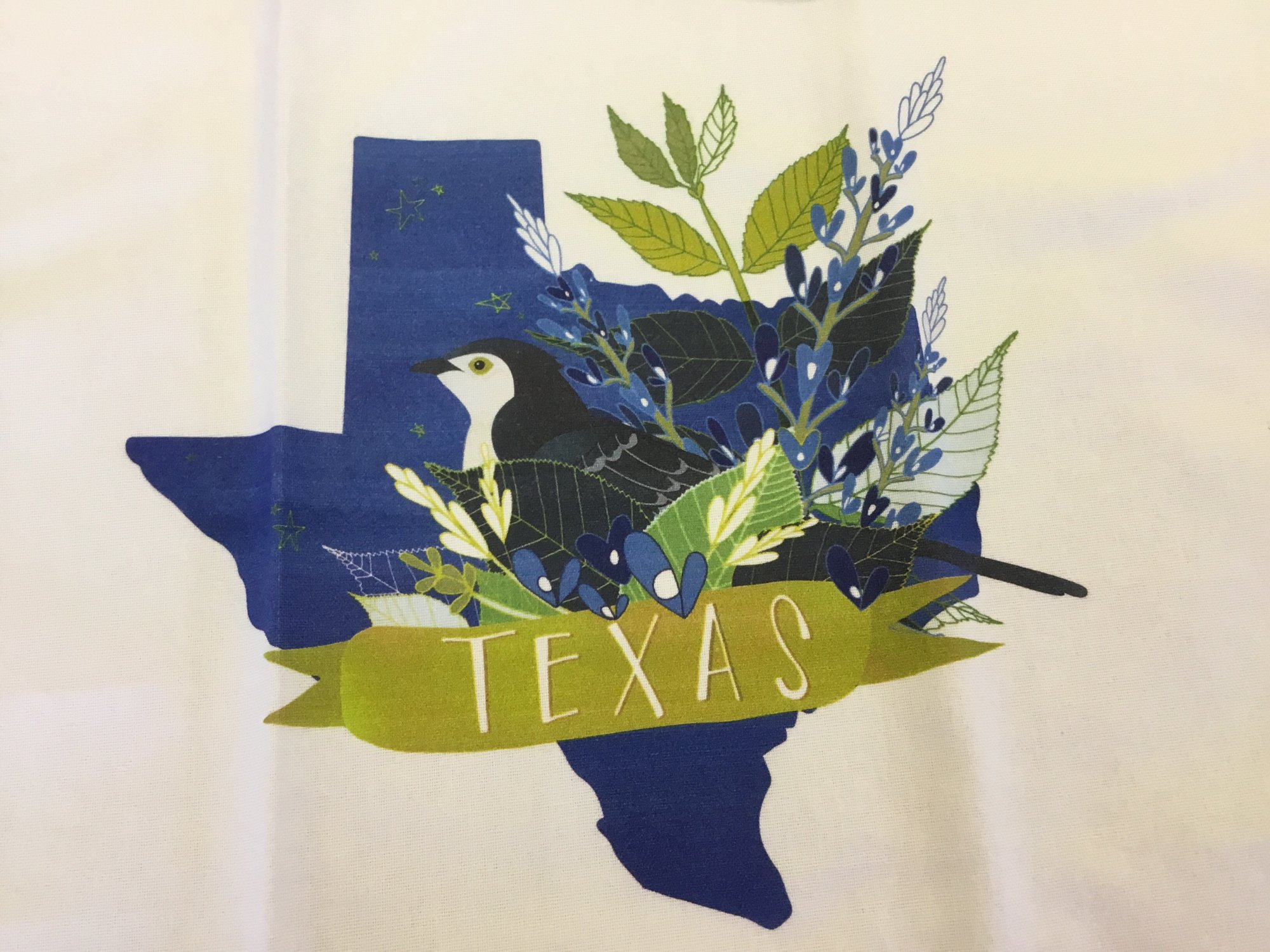 DESERT SONG TEA TOWEL TEXAS by Moda