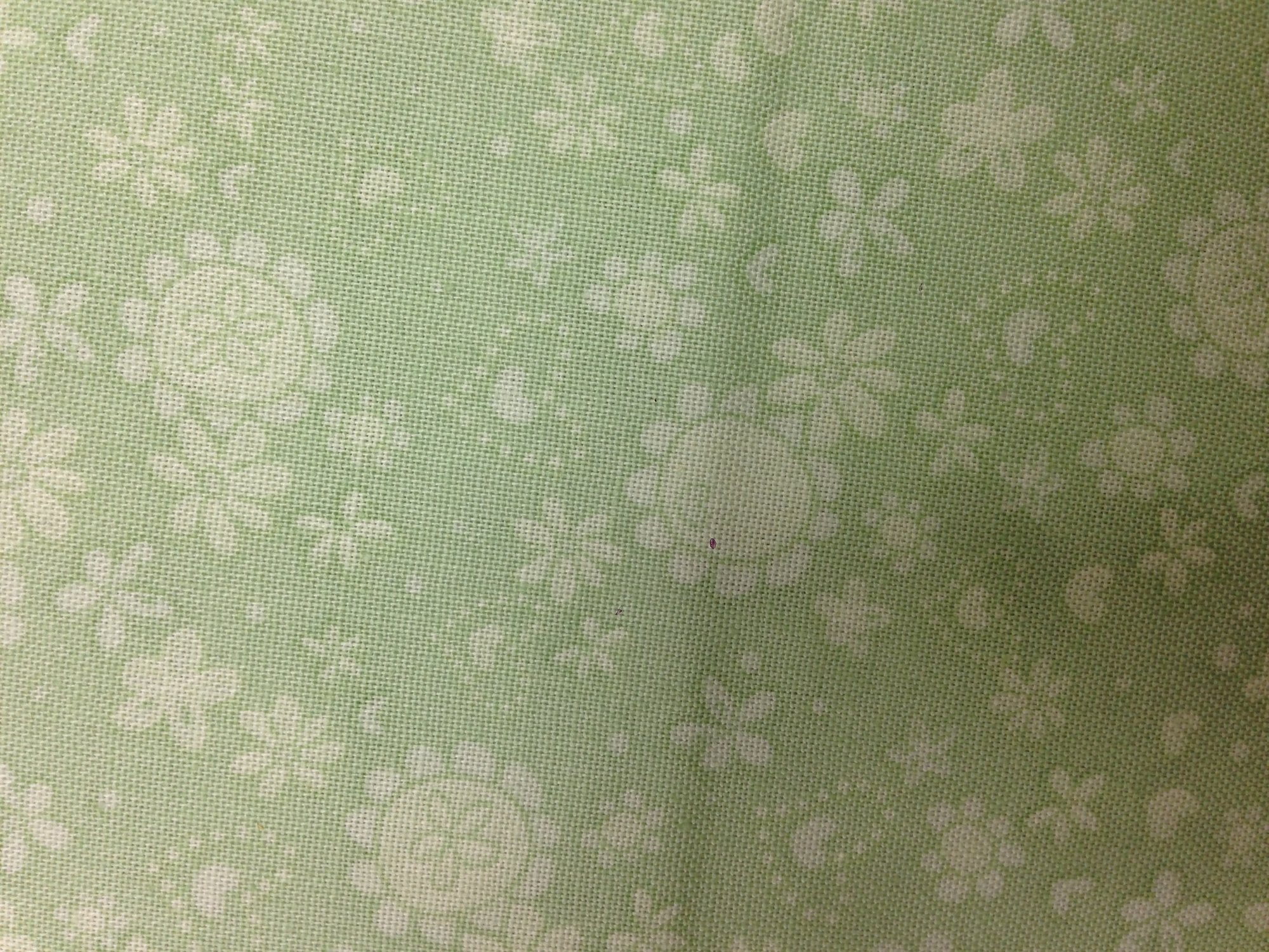 BF111 Light Green Floral