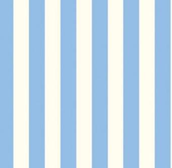 Color Stripe-Blue
