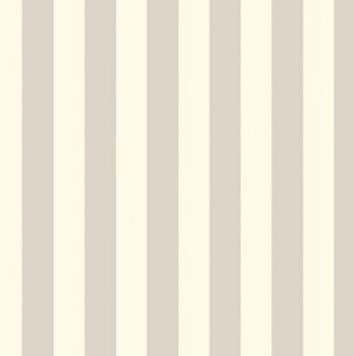 Color Stripe-Neutral