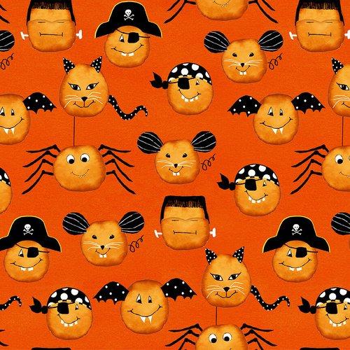 Pumpkin Faces Orange