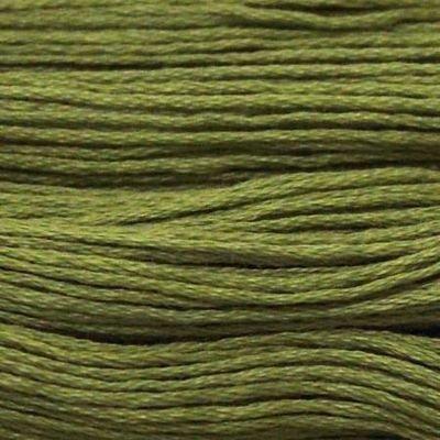 Presencia Finca 4561 Light Avocado Green